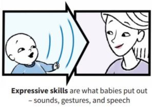 expressive communication skills