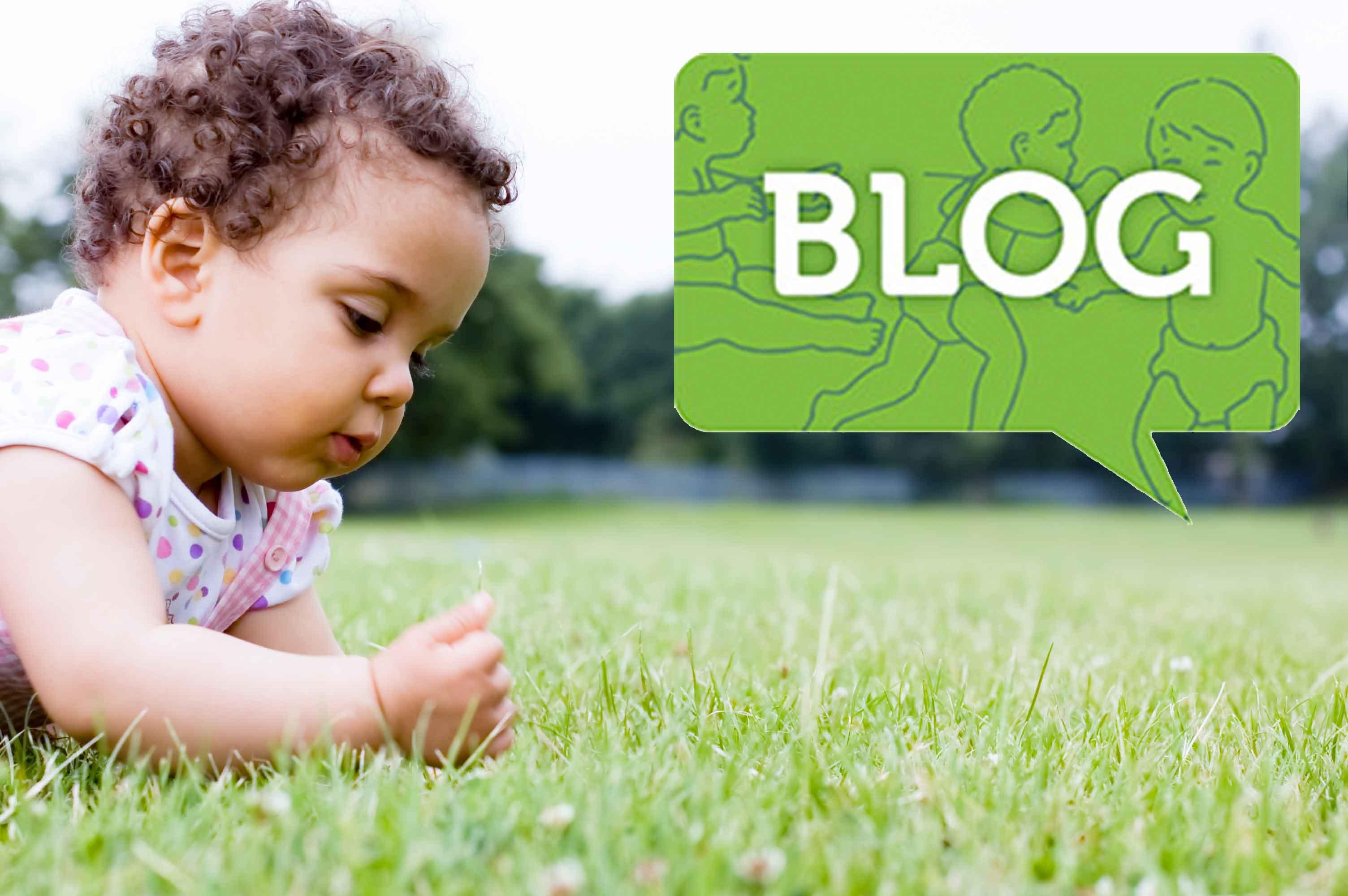 BlogImage2