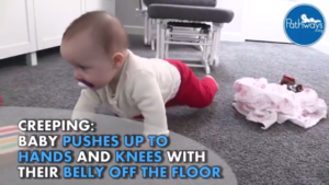 parent guide to crawling