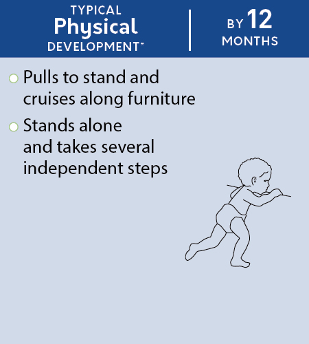 physical_development_by_12_months