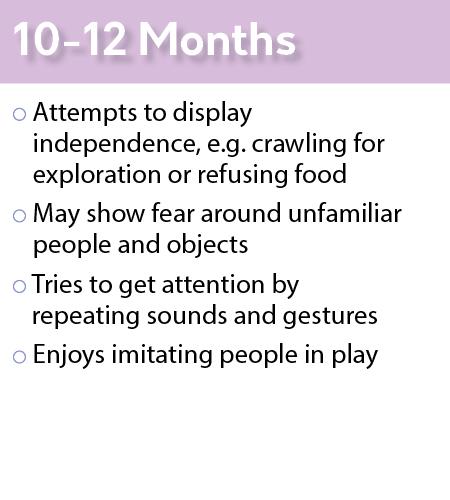 social_emotional_10-12_months