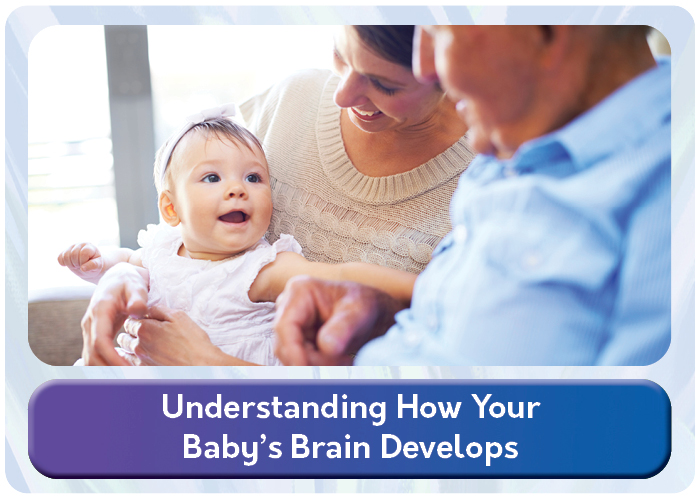 babys_brain