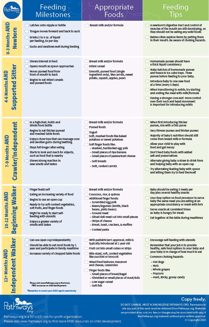 feeding_checklist_english_image